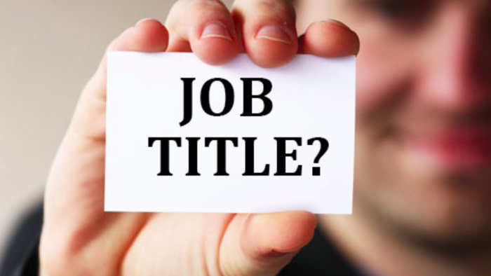 A Call for Standardising the Job Titles in Today's Architecture Firms
